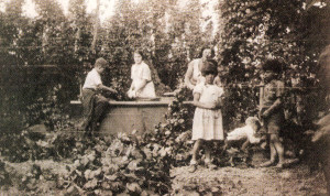 This 1936 photograph shows two families picking in a half end bin. Evelyn Turk, seen with her brother Bob on the left, is the Mrs. Dixon in the next photograph.